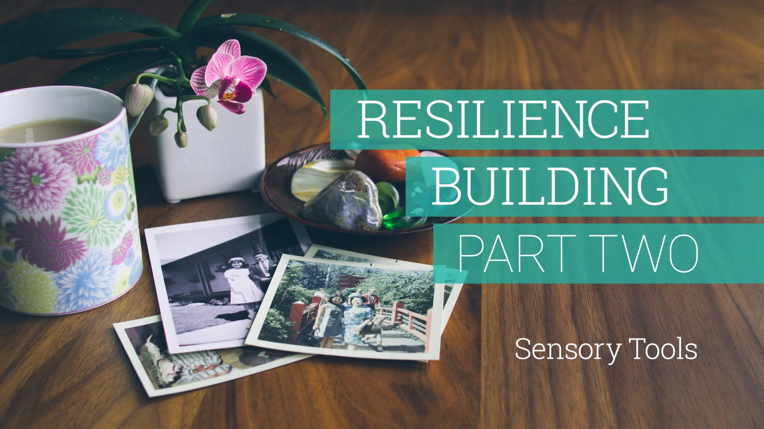 Resilience-Building Part 02